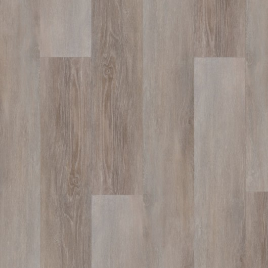 evolution trend MP 4503 rovere canyon